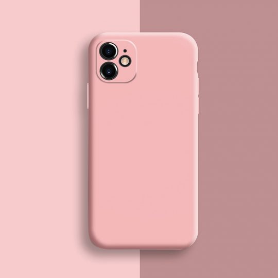 Apple iPhone 11 Pro Max Phone Cases